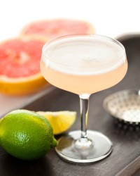 Fruit martini citrus fresh homemade recipe liquor mixed cocktail
